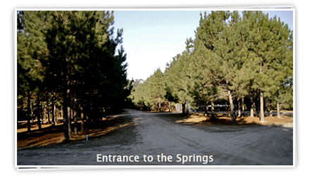 Cartwright Springs - Entrance